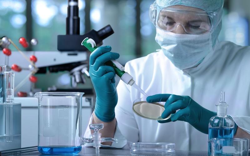 Una proteína puede retrasar el crecimiento del tumor intestinal